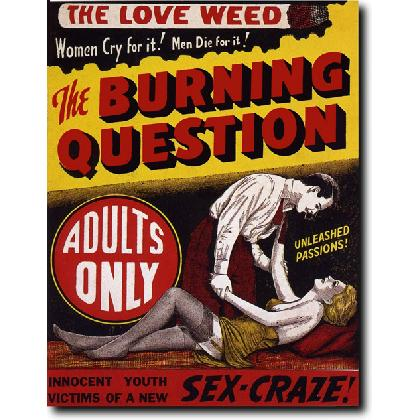 THE BURNING QUESTION T-SHIRT Image