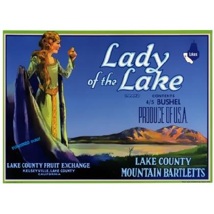 LADY OF THE LAKE CRATE LABEL T-SHIRT Image