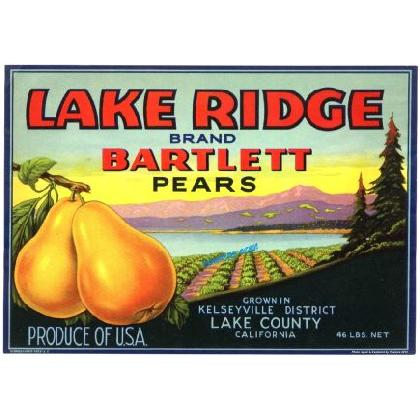 LAKE RIDGE PEARS CRATE LABEL T-SHIRT Image