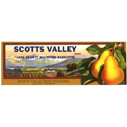 SCOTTS VALLEY FRUIT CRATE LABEL T-SHIRT Image